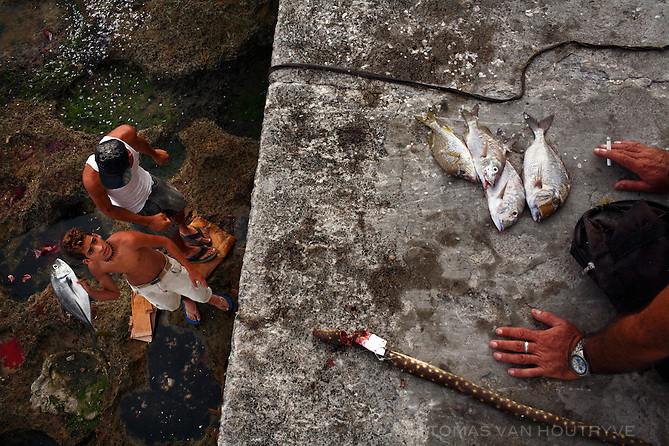 A teenage boy prepares to throw a freshly caught fish up on top of a wall along the Malecon in Havana, Cuba on 9 October 2008.