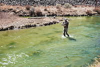 Nick Romano, of Bozeman, fights a brown trout on a creek south of Bozeman. Spring fishing is heating up and with warm weather on the horizon area anglers are getting excited for the season.