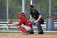 Boston Red Sox catcher Austin Rei (28) and umpire Reed Basner during an instructional league game against the Minnesota Twins on September 26, 2015 at CenturyLink Sports Complex in Fort Myers, Florida.  (Mike Janes/Four Seam Images)
