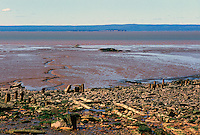 "Joggins, NS, Nova Scotia, Canada - Fossil Beach and Bay of Fundy Tidal Mud Flats at ""Joggins Fossil Cliffs"", UNESCO World Heritage Site - Fundy Shore & Annapolis Valley Region"