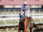 November 25, 2018: Battle of Midway with Flavien Prat wins the Native Diver Stakes at Del Mar on November 25, 2018 in Del Mar, California. Evers/Eclipse Sportswire/CSM