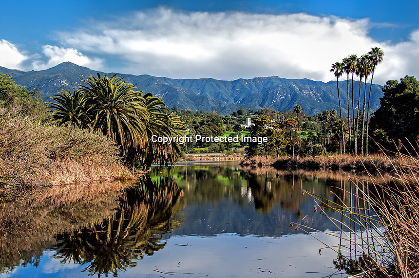A view of the Andree Clark Bird Refuge on January day, Santa Barbara, California.