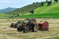 ITALY Tuscany, hay pressing in Maremma, tractor with bale pressing machine / ITALIEN Toskana, Ballenpresse, Heu pressen in der Maremma