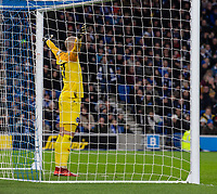Brighton & Hove Albion's David Button prepares for a penalty to be taken by Liverpool's Mohamed Salah<br /> <br /> Photographer David Horton/CameraSport<br /> <br /> The Premier League - Brighton and Hove Albion v Liverpool - Saturday 12th January 2019 - The Amex Stadium - Brighton<br /> <br /> World Copyright © 2018 CameraSport. All rights reserved. 43 Linden Ave. Countesthorpe. Leicester. England. LE8 5PG - Tel: +44 (0) 116 277 4147 - admin@camerasport.com - www.camerasport.com