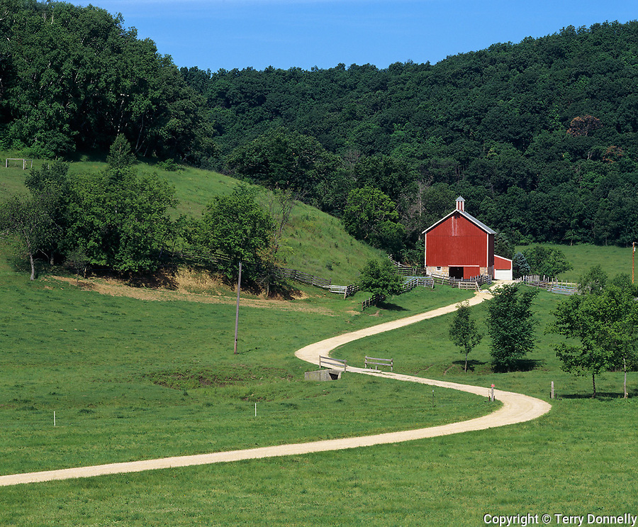 Iowa County, WI<br /> Curving gravel road leads to a red barn beneath a wooded hillside