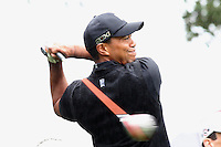 12/01/12 Thousand Oaks, CA:  Tiger Woods during the third round of the 2012 World Challenge presented by Northwestern Mutual. Held at the Sherwood Country Club.