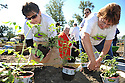 Senior citizens get together to help plant and build a new park after being awarded the Elations Boomers Building a Better America Grant in Houma, La., Saturday, Oct. 30, 2010. Elations, the leading liquid brand of glucosamine and chondroiton supplement, gave $10,000, expert advice and resources towards the building of the park for seniors at the South Louisiana Seniors Home in Houma......(Cheryl Gerber/AP Images for Boomer Building a Better America)