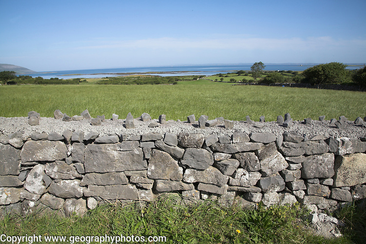 Limestone stone wall field boundary and rural landscape view to sea, near Ballyvaughan, County Clare, Ireland