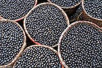 Alimentos, frutas Açai. Foto de Ricardo Azoury.