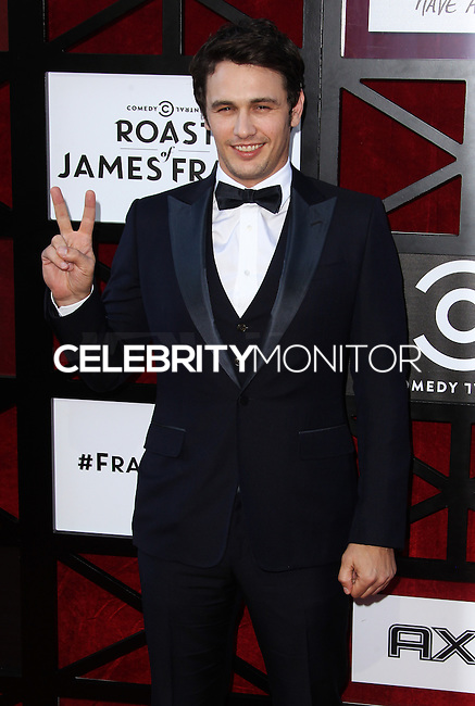 CULVER CITY, CA - AUGUST 25: Comedy Central Roast Of James Franco at Culver Studios on August 25, 2013 in Culver City, California. (Photo by Xavier Collin/Celebrity Monitor)