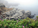 Atlantic Ocean fog York Maine, New England region of northeatern United States, boardered by Atlantic Ocean to the east and south, Maine is the northermost and easternmorst portion of New England, jagged rocky coastline, rolling mountains, heavily forested interior picturesque waterways, seafood cuisine, lobster and clams, European settlement in Maine was 1604, 23rd state March 15 1820, Dirigo, Maine is The Pine Tree State, Maine Stock and Fine Art Photography.  All Rights Reserved RonBennettPhotography.com All Photographs for SALE.