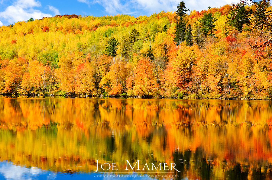 Autumn foliage along the shore of the Saint Louis River in Jay Cooke State Park.