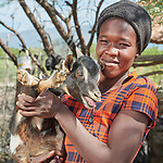 Zachel Choisil holds one of her goats in the Haitian community of Ganthier, where Mission Sociale des Eglises Hatiennes (MISSEH), a member of the ACT Alliance, has helped her and other residents rebuild their homes and lives after the village was devastated in 2016 by Hurricane Matthew. Besides providing construction material for housing construction, MISSEH has also provided animals, seeds and tools to farmers, while helping the community organize a more agile and responsive program of disaster risk reduction.