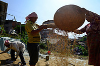 NEPAL Bhaktapur, old town, villager winnowing rice, seperate the grain from the chaff