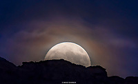 MOONSET- RED CLIFF DESERT RESERVE- SNOW CANYON - ST. GEORGE. UTAH<br />
