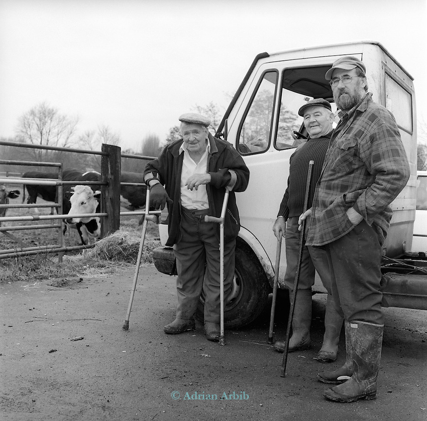 Len Nixey,  86 years old,  has kept cattle on the meadow since 1947 when he left the army.  He was in the battle of Monte Casino and out of a regiment of1000 soldiers he was 1 of 7 that survived.<br /> <br /> Here seen on the 30th Nov 2002 on the day that the cattle have to be removed for the winter from the meadow.<br /> Poplar Mead, Holton,  Wheatley, Oxford  OX33 1PZ.<br /> <br /> (ctr) Dennis Drinkwater _ rhs unk