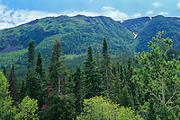 Appalachian Mountains<br /> Parc de la Gaspesie<br /> Quebec<br /> Canada
