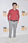 WESTWOOD, CA - APRIL 17: Dylan Summerall arrives at the Premiere Of STX Films' 'I Feel Pretty' at Westwood Village Theatre on April 17, 2018 in Westwood, California.