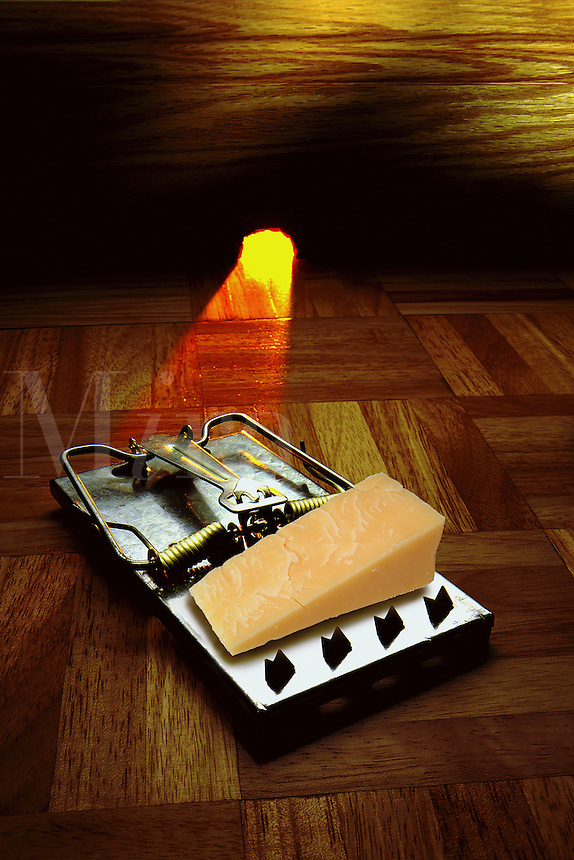 Mousetrap with cheese near the mouse hole