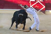 Concurso Cortes Medina del Campo