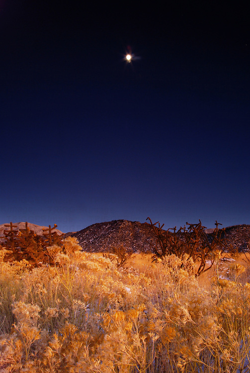 travel destinations: the sandia mountains desert twilight landscape glows beneath the moon rise, albuquerque, new mexico