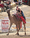 Jessica Bailey competes in a media day camel race at the International Camel Races in Virginia City, Nev., on Friday afternoon, Sept. 7, 2012. The 53rd annual event continues Saturday at 1 p.m. and at noon on Sunday..Photo by Cathleen Allison