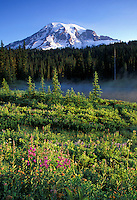 Mount Rainier and Reflection Lake, Mount Rainier National Park, Washington