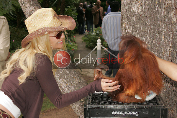 Nicolette Sheridan<br />