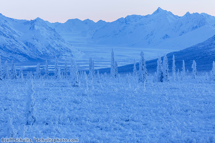 Winter landscape of snow and frost covered trees and willows with Chugach Mountains in the Eureka area of Southcentral Alaska <br /> <br /> Photo by Jeff Schultz/SchultzPhoto.com  (C) 2016  ALL RIGHTS RESVERVED