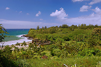 View of coastline and plants at Allerton Gardens, Kauai, one of the 5 National Tropical Botanical gardens in the US