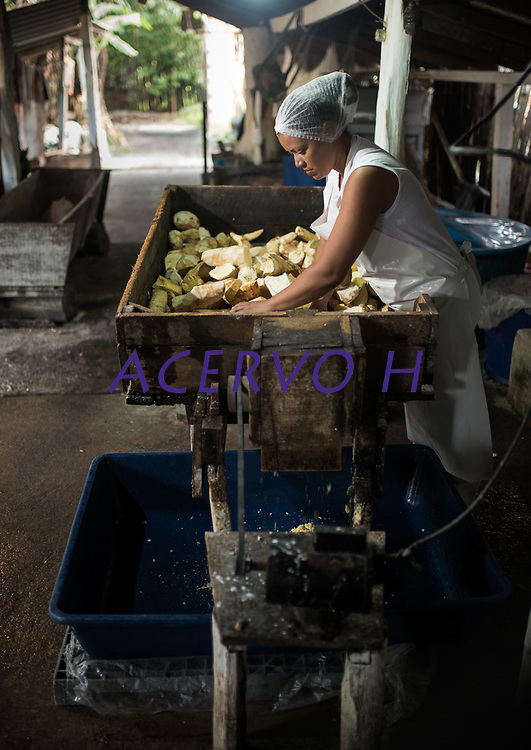 """Processo de produção da farinha de tapioca dotipo """"Pipoquinha""""<br /> Vila de Americano, Santa Izabel.<br />  ©Carlos Borges<br /> <br /> A farinha de mandioca é um dos componentes essenciais da dieta da população brasileira, notadamente das regiões Norte e Nordeste. A partir da raiz da mandioca (Manihot esculenta), são produzidas: as farinhas seca, d'água e mista; a goma ou fécula; o tucupi; e a farinha de tapioca. O processamento da raiz da mandioca é, frequentemente, realizado segundo métodos tradicionais, herdados dos indígenas, que foram os primeiros cultivadores da espécie"""