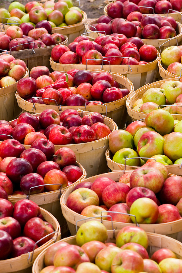 Fresh Food - Apples
