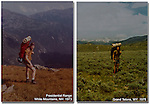 I began exploring the mountains in high school, then moved to Colorado to study zoology. Ultimately, earning a MS in entomology from Washington State University. I've traveled and photographed the entire western USA for 40 years.