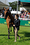 Stamford, Lincolnshire, United Kingdom, 4th September 2019, Becky Woolven (GB) & DHI Babette K during the 1st Horse Inspection of the 2019 Land Rover Burghley Horse Trials, Credit: Jonathan Clarke/JPC Images