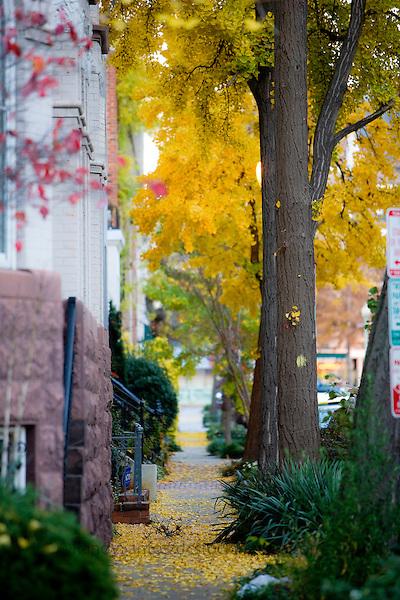 Dupont Circle Neighborhood Washington DC Architecture