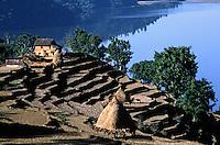 Wular lake and terraced hillside near Pokhara - SIKLIS TREK, NEPAL