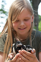 Mädchen, Kind mit Elster, verwaistes Küken in Menschenhand wird gepflegt, Wildtieraufzucht, Pica pica, Magpie, Pie bavarde