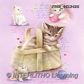 Isabella, CUTE ANIMALS, LUSTIGE TIERE, ANIMALITOS DIVERTIDOS, paintings+++++,ITKE061242S,#ac#, EVERYDAY ,cats
