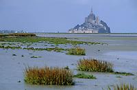 Europe/France/Normandie/Basse-Normandie/50/Manche/Baie du Mont Saint-Michel: Le mont et la baie vus depuis la pointe de Rochetorn