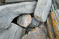 Rocks at Cape Elizabeth