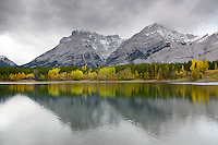 Mt. Kidd and Wedge Pond, Golden aspen, stormy day, Kananaskis Valley, Alberta, Canada