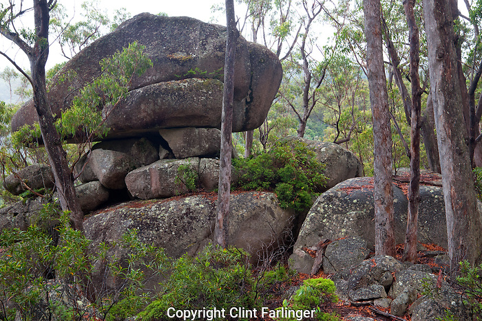 Lyrebird Rock, Gibraltar Range National Park, New South Wales, Australia