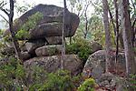 Lyrebird Rock, Gibraltar Range National Park, New South Wales, Australia
