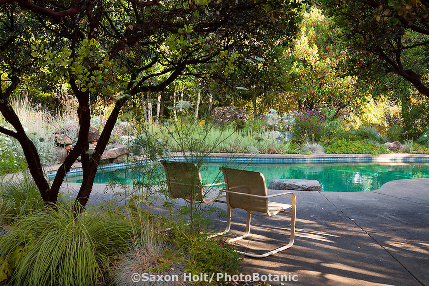Chairs sheltered under small manzanita trees by swimming pool patio in The Melissa Garden, California