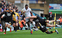 Wasps v Bath : 12.10.14