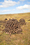 Peat cutting trenches, near Mid Walls, Mainland, Shetland Islands, Scotland