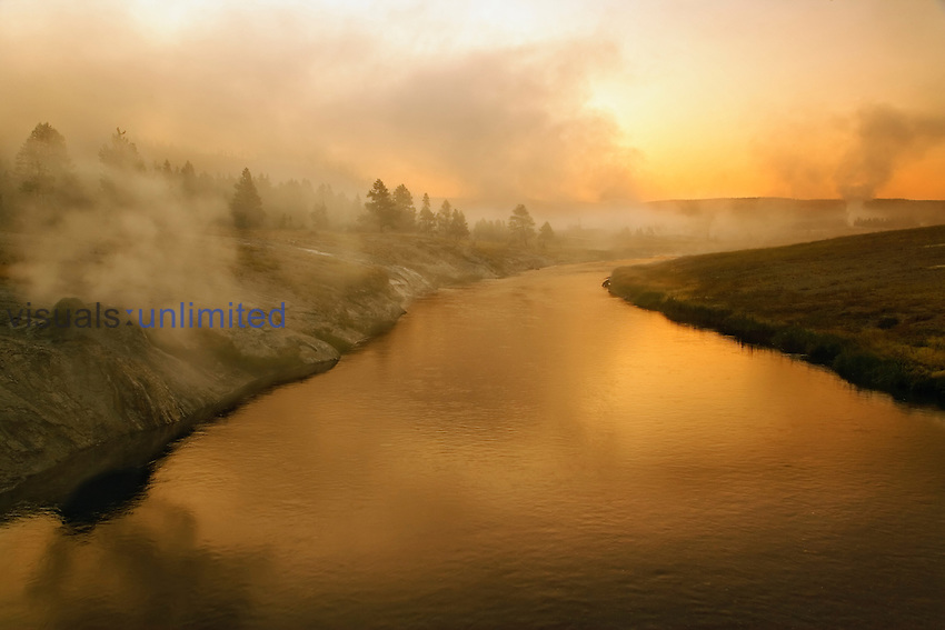 Firehole River at sunrise with numerous geysers erupting, Upper Geyser Basin, Yellowstone National Park, Wyoming, USA.