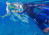 CT-  Ultimate Snorkeling Tour during HAL Konsingdam S. Caribbean Cruise, Grand Turk, Turks & Caicos
