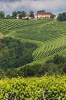 Europe, France, Aquitaine, Pyrénées-Atlantiques, Béarn, Jurançon: Domaine  Larredya// Europe, France, Aquitaine, Pyrenees Atlantiques, Bearn, Jurançon: Camin Larredya domain,