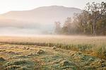 A misty morning in Brownsville, West Windsor, VT, USA